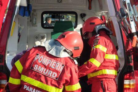 Accident mortal pe DN 7A. Un șofer a murit după ce a lovit un cal